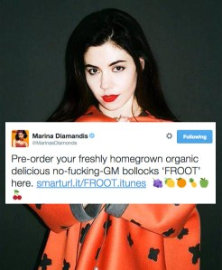 marina-diamonds-leak1