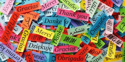 Fotolia_ThankYouGlobal-optimized-1600x800-for-slider